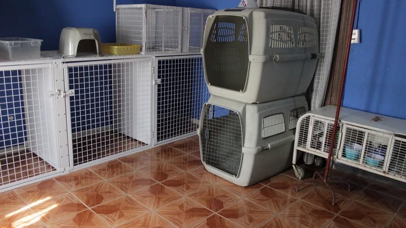 Hotel de Mascotas